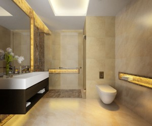 http://www.warnerin.com/files/gimgs/th-73_standard-toilet-ca1.jpg